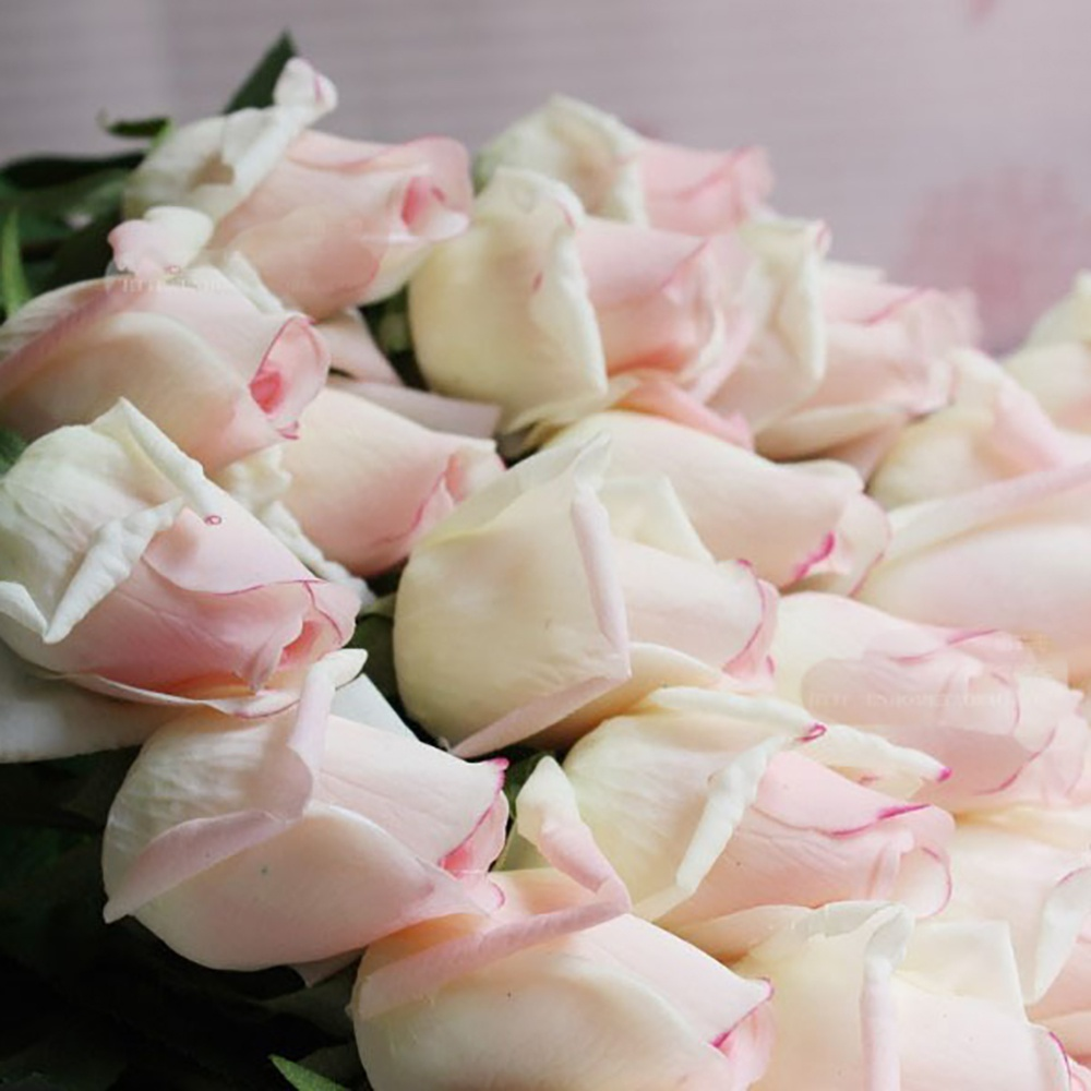 20PCS White with Pink Artificial Silk Fake Real Touch Rose Bud Flower for Wedding Party